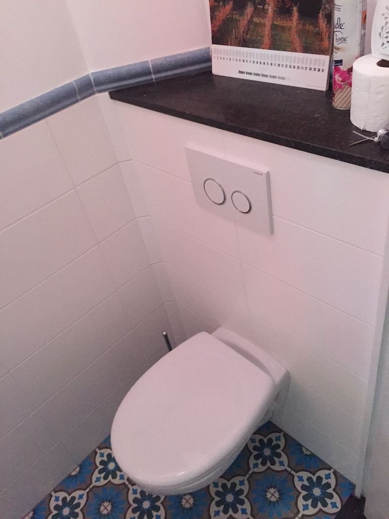 10 - toilet1